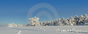 winter-panorama-in-a-sunny-day-stock_photo_by_vlad_baciu